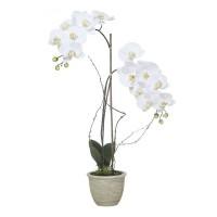 Orquídea blanca con hojas artificiales Phalaenopsis maceta cerámica beige 72h cm