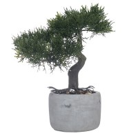 Maceta cemento con Bonsai artificial 6x10x10,50h cm