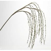 Flor foam tallo ramas colgantes verde Floca 138h cm