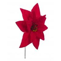 Flor de Pascua Poinsettia roja pequeña Amir 15cm