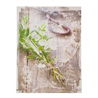Lienzo serigrafiado hierbas aromáticas 2 modelos 30x40 cm