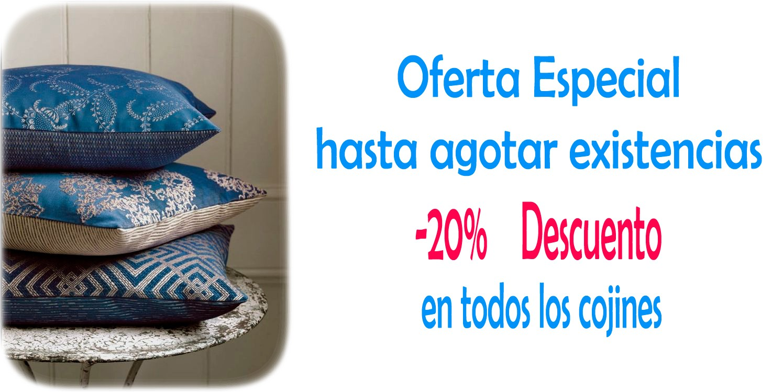 Oferta Especial cojines -20%